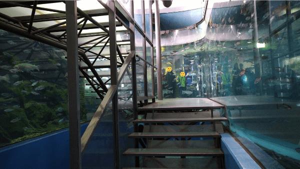 二重回遊水槽 内部階段