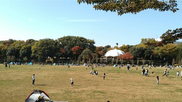麻溝公園芝生広場