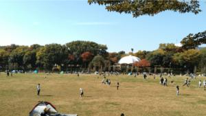 芝生広場1